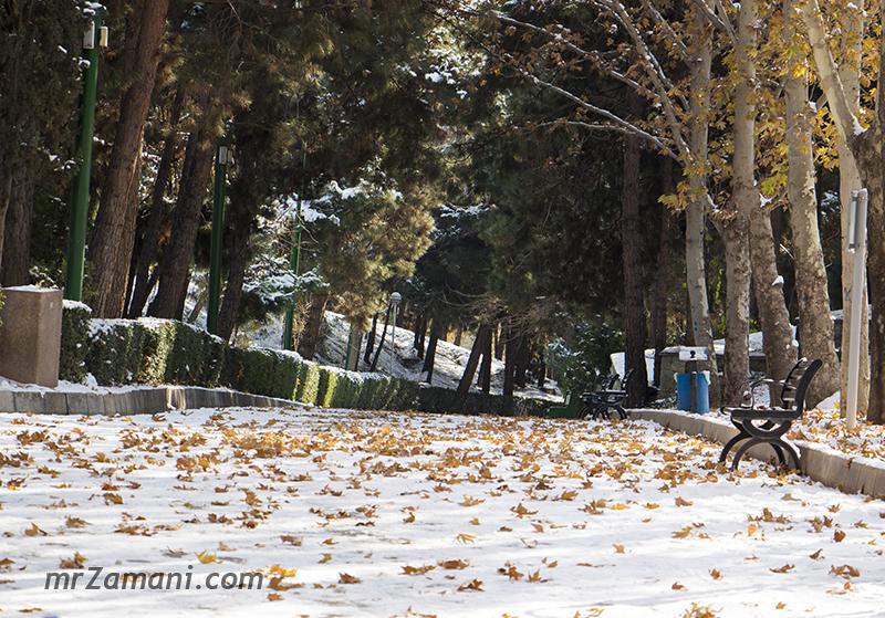 اولین برف زمستان 95 تهران