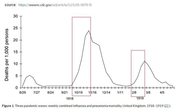 شیوع آنفلانزا در سال 1918 و 1919 در ارویا و امریکا - مثالی برای نام گذاری بازاریابی ویروسی