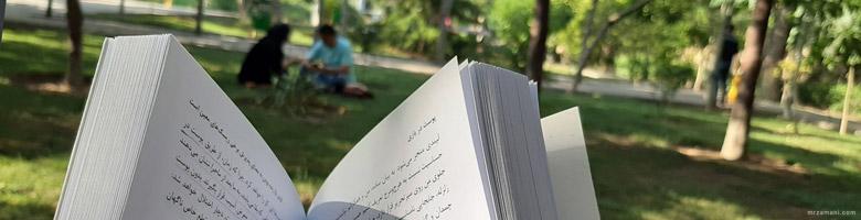کتاب پوست در بازی آخرین کتاب نسیم طالب در پارک